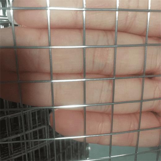 Galvanized Welded Wire Mesh_1